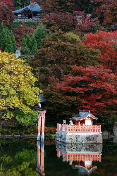 勝尾寺の末社