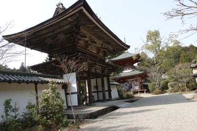 奈良県円成寺の山門