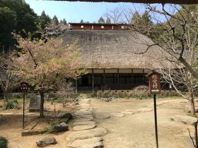 栃木県大雄寺の写真