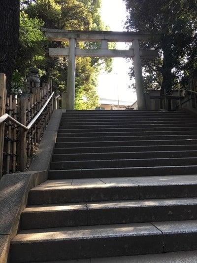 東京都渋谷氷川神社の本殿