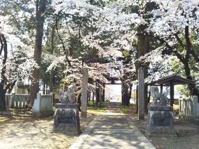 山梨県松尾神社の写真