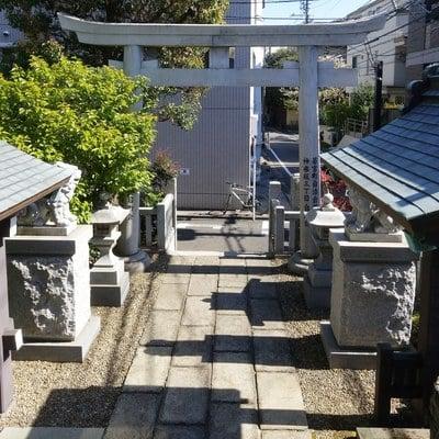 善國寺の近くの神社お寺 神楽坂若宮八幡神社