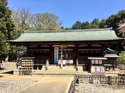 愛知県上地八幡宮の本殿