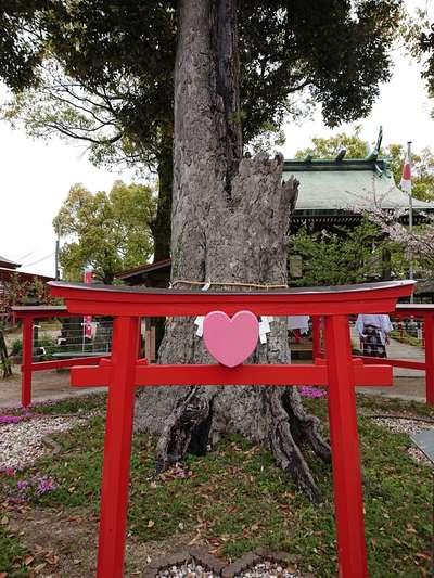 恋木神社の狛犬