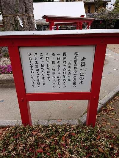 恋木神社(福岡県)