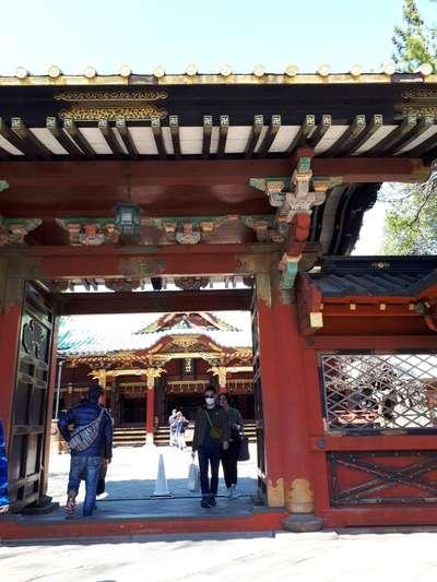 根津神社(東京都根津駅) - その他建物の写真
