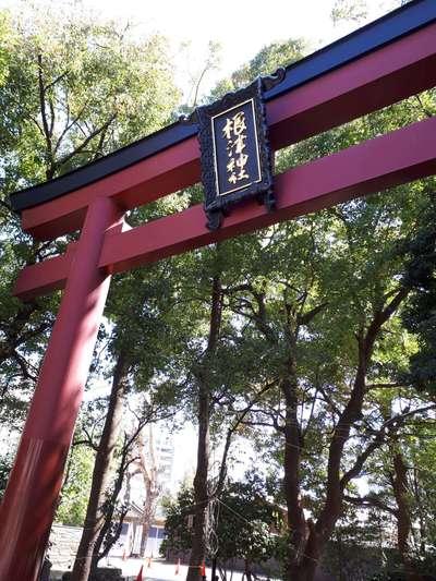 根津神社(東京都根津駅) - 歴史の写真