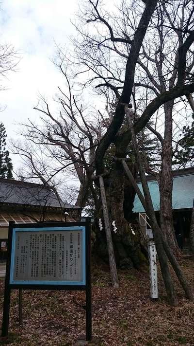 蠶養國神社(福島県)