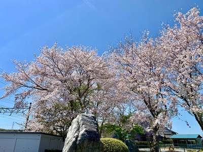 静岡県子宝・安産の寺 西福寺の写真