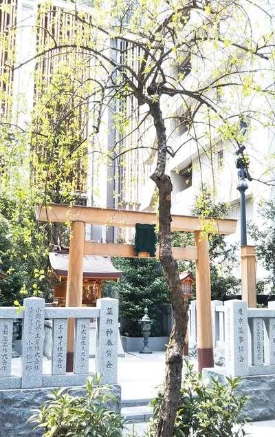 薬祖神社の鳥居