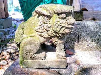 津島社(中野津島社)の狛犬