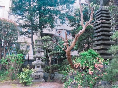 総持寺の近くの神社お寺|成願寺