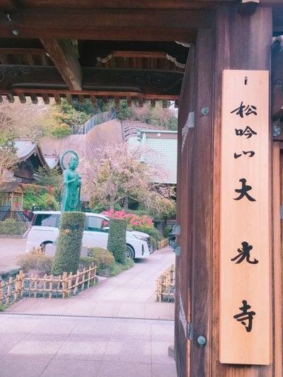 神奈川県大光寺の写真