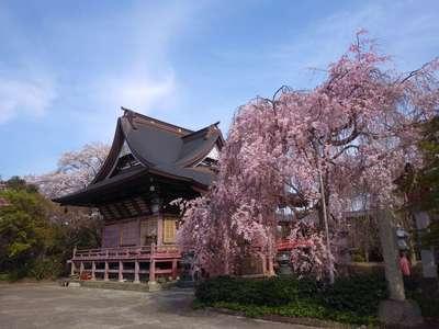 茨城県二十三夜尊桂岸寺の庭園
