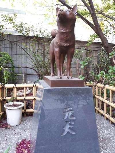 蔵前神社の狛犬