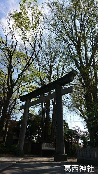 東京都葛西神社の鳥居