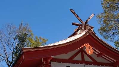 埼玉県秩父今宮神社の本殿