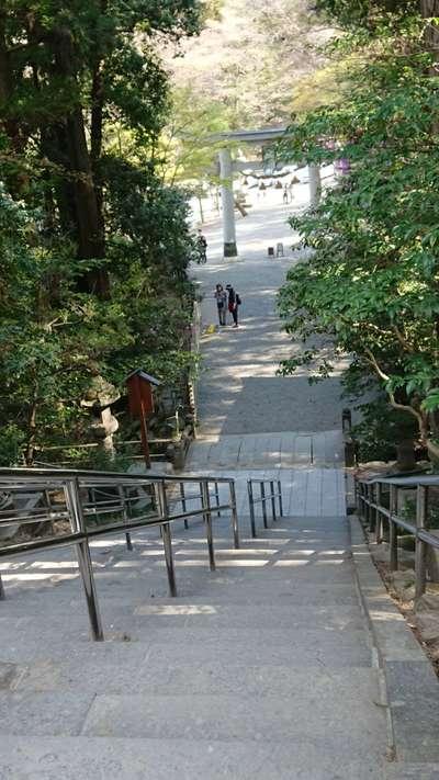 埼玉県宝登山神社の鳥居