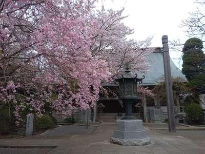 祇園寺(茨城県)