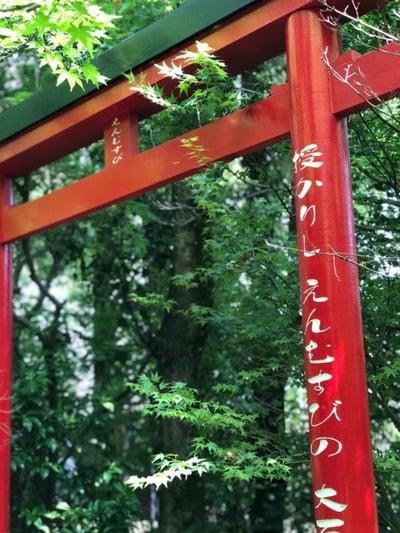 七狩長田貫神社の近くの神社お寺|神徳稲荷神社