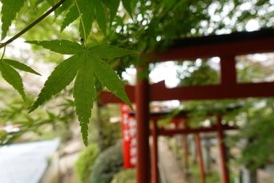 奈良県安倍文殊院 の鳥居