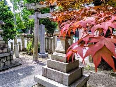 愛知県櫻田神社の建物その他
