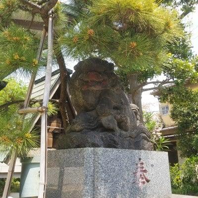 白髭神社の狛犬