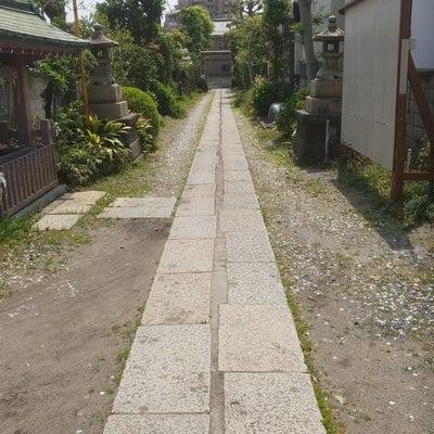 諏訪神社の近くの神社お寺|白髭神社