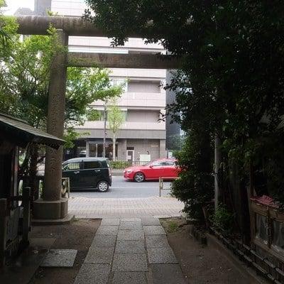 東京都櫻木神社の鳥居