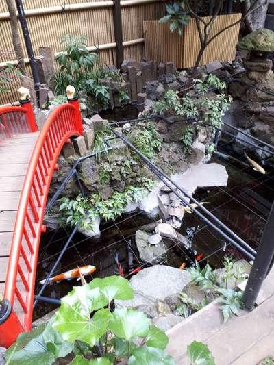 心城院(東京都湯島駅) - 動物の写真