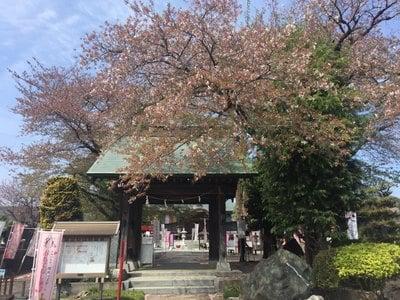 栃木県下野大師華蔵寺の山門