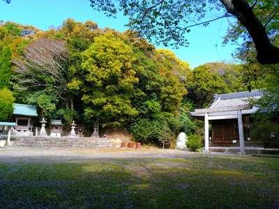 野間神社の建物その他