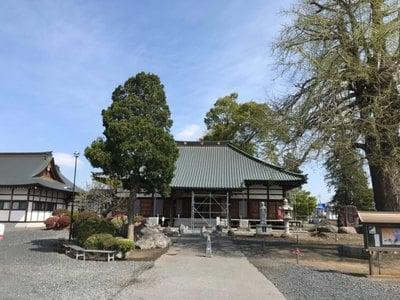 栃木県普門寺の写真