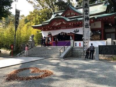 来宮神社(静岡県来宮駅) - 本殿・本堂の写真
