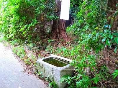 神明神社の手水