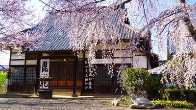 長野県典厩寺の写真