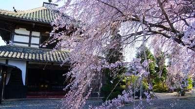 長野県典厩寺の建物その他