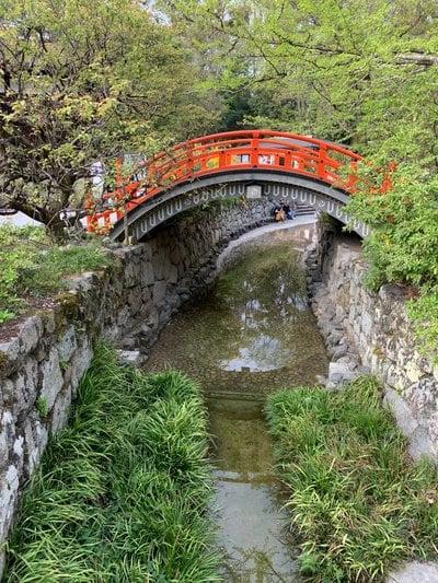 賀茂御祖神社(下鴨神社)(京都府出町柳駅) - 周辺の写真
