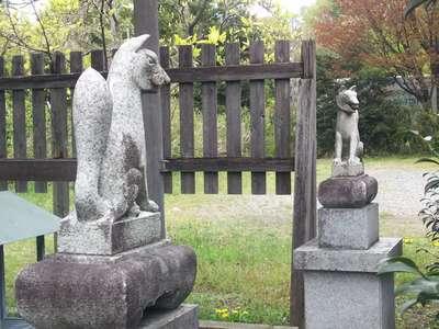 矢倉稲荷社の狛犬