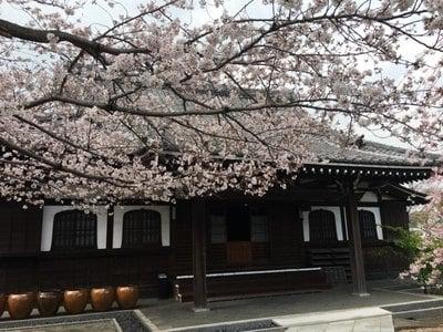 神奈川県泥牛庵の本殿