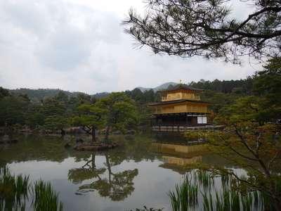 鹿苑寺(金閣寺)(京都府北野白梅町駅) - 景色の写真
