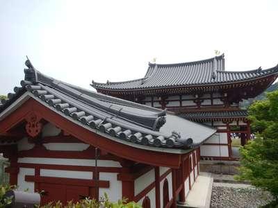 京都府平等院の本殿