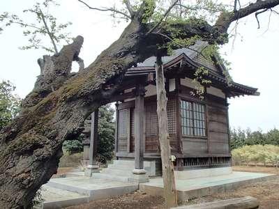 埼玉県多宝院の本殿