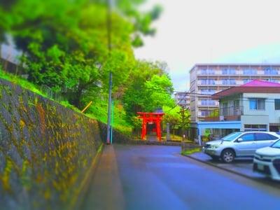 愛知県稲荷社(義市稲荷社)の写真