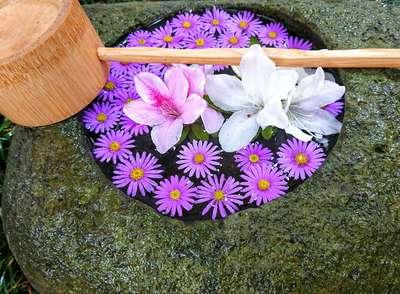 寿量山 速成寺の手水