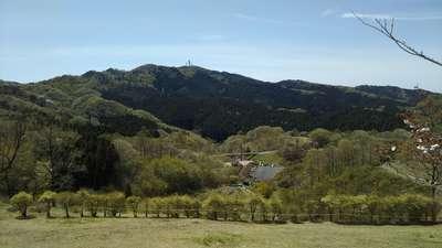 茨城県星野宮神社の景色