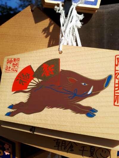 新琴似神社(北海道新琴似駅) - 絵馬の写真