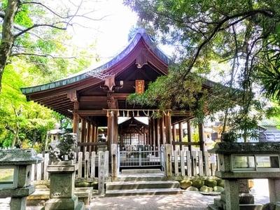愛知県八幡神社(遠島八幡神社)の本殿