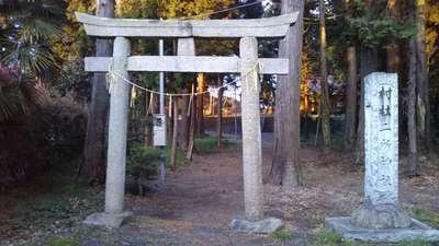 二所神社の鳥居