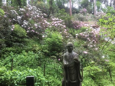 奈良県岡寺(龍蓋寺)の写真